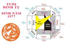 phong thuy xay biet thu dinh ty 1977 Trọn bộ bí quyết phong thủy xây biệt thự tuổi Đinh Tỵ 1977 từ A - Z