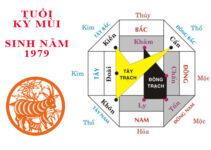 phong thuy xay biet thu ky mui 1979 Phong thủy chọn màu sơn xây biệt thự hợp mệnh tuổi 1979